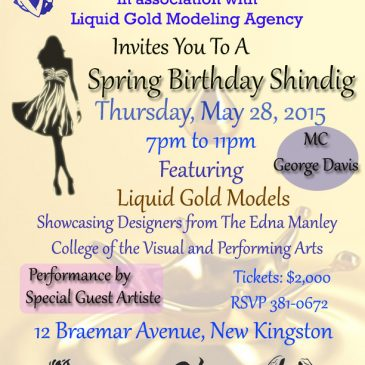 Birthday Celebration Shindig Fashion Show May 28th, 2015