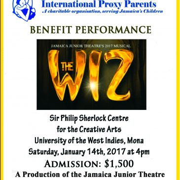The WIZ Benefit Performance